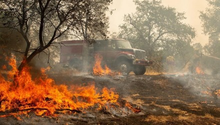 Firefighters douse a hotspot near various homes as the Carr fire continues to burn near Redding  California  on July 28  2018  The US federal government approved aid on July 28 for California as thousands of firefighters battled to contain a series of deadly raging wildfires that have killed six people  including two young children and their great grandmother  and destroyed hundreds of buildings    AFP PHOTO   JOSH EDELSON